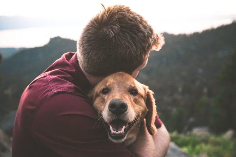 Man hugging dog, to get emotional comfort