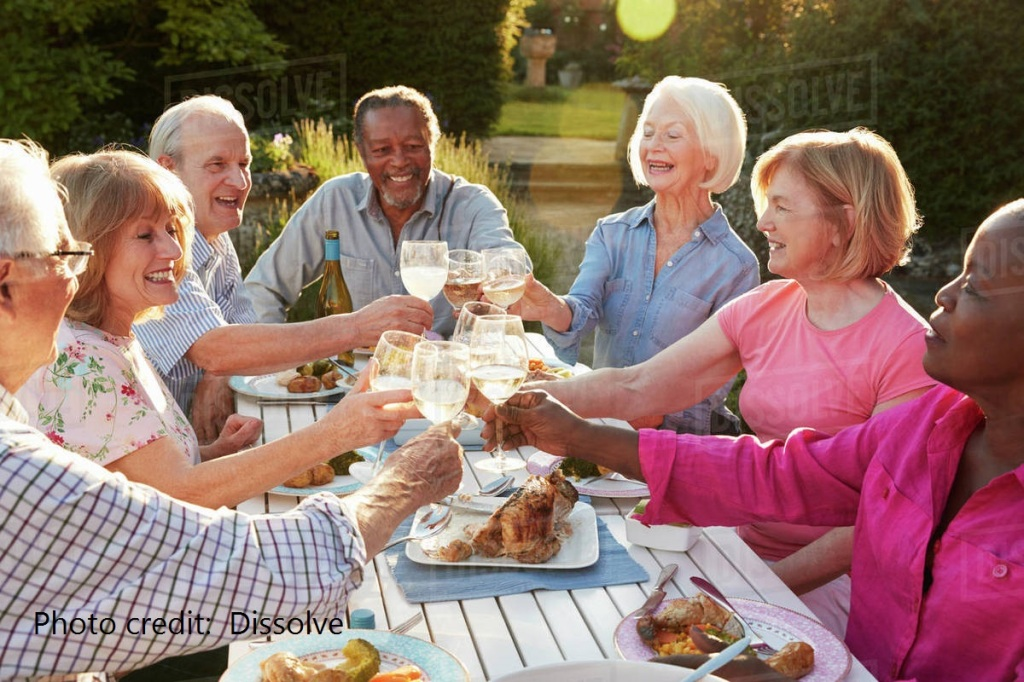 Happy group of older adults sitting at a picnic style table with food on it, and the group all are holding wine glasses touching for a toast.