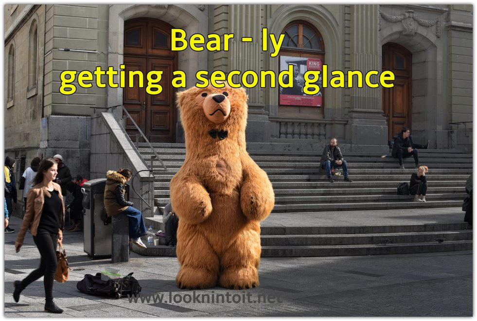 Meme bear costume